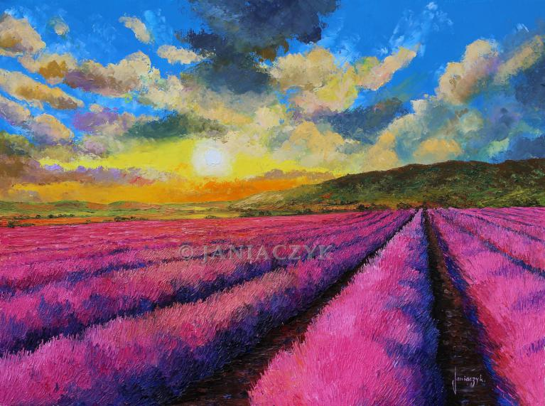 Sunset over the lavender 80x60 cm