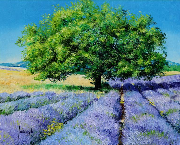 Tree and lavender field painting 41x33 cm